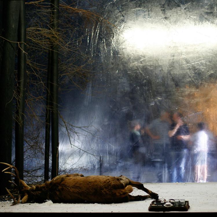 Meine Bienen. Eine Schneise. (production Festival de Salzburg)